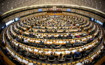 How the European Parliament works?