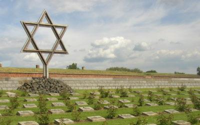 Otázka židovství v nacistickém Německu, 1931-1945
